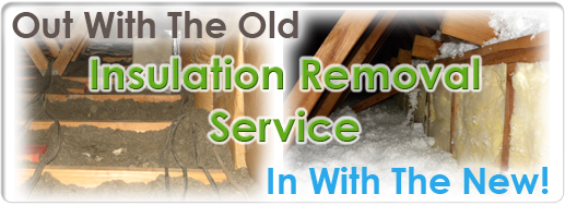 dallas insulation removal